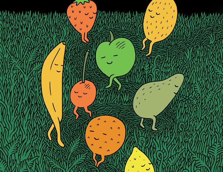 FruitFun-LukeRamsey